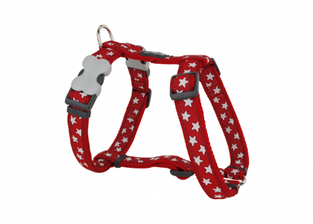 Red Dingo Red and white star Dog harness
